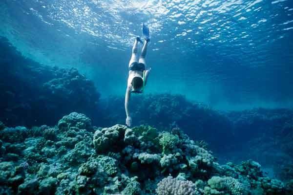 Snorkel en el Mediterráneo : 5 destinos